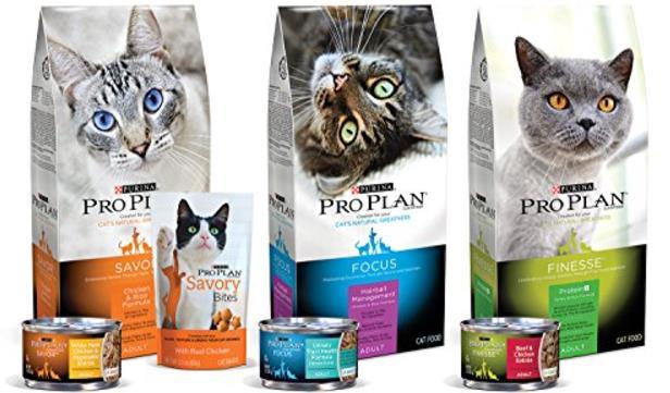 Daftar Harga Makanan Kucing Proplan