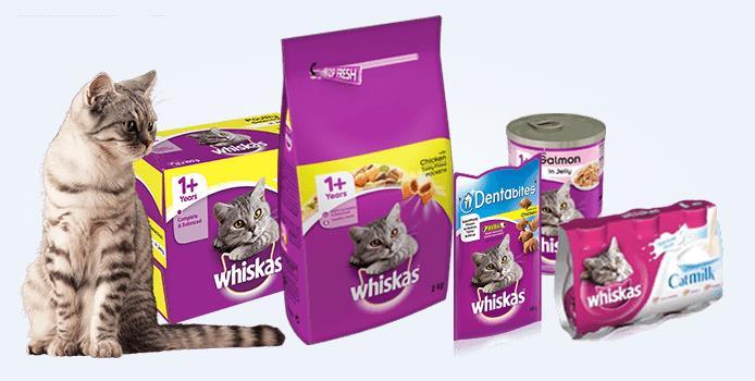 Macam-macam makana kucing whiskas