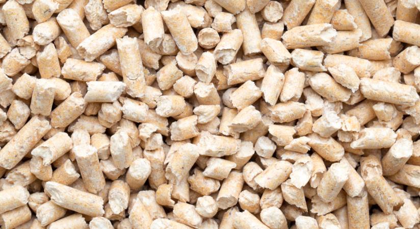 Pasir Kucing Jenis Biodegradable