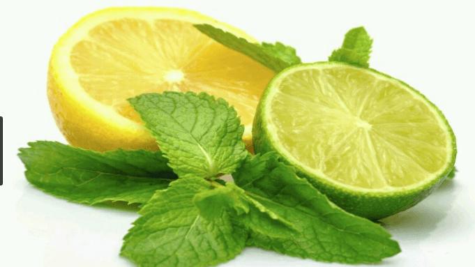 Bau Lemon dan Jeruk Tidak Disukai Kucing