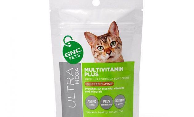 Contoh Vitamin Untuk Kucing