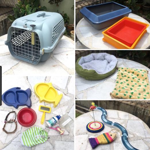 Membersihkan Peralatan Kucing