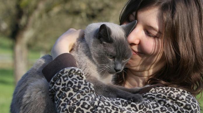 merawat dengan cara mengacak kucing berbicara