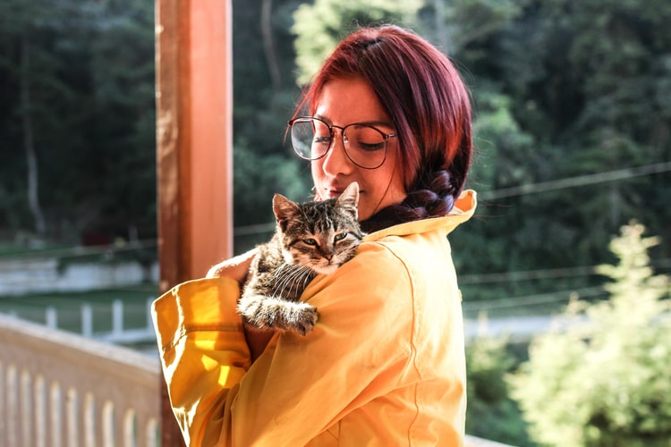 Manfaat memelihara kucing Kucing Merupakan Teman Setia