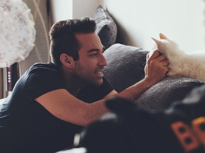 Manfaat memelihara kucing Menjadikan Tubuh Sehat